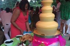 Cheese-Fountain